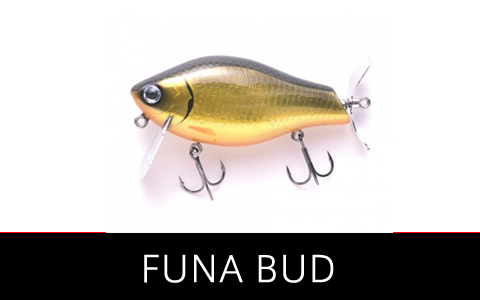 funabud